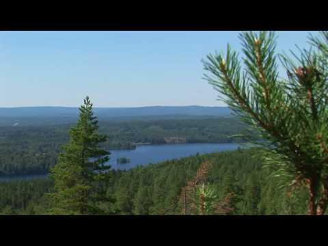 Sjön Racken, Arvika Sweden