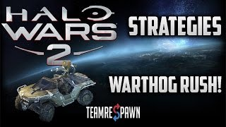 How to Warthog Rush | Halo Wars 2 Strategy