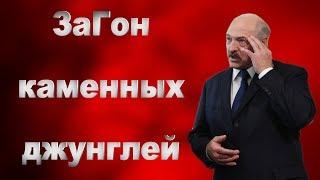 Лукашенко Что пилят Чиновники СРОЧНО / Общество Гомель