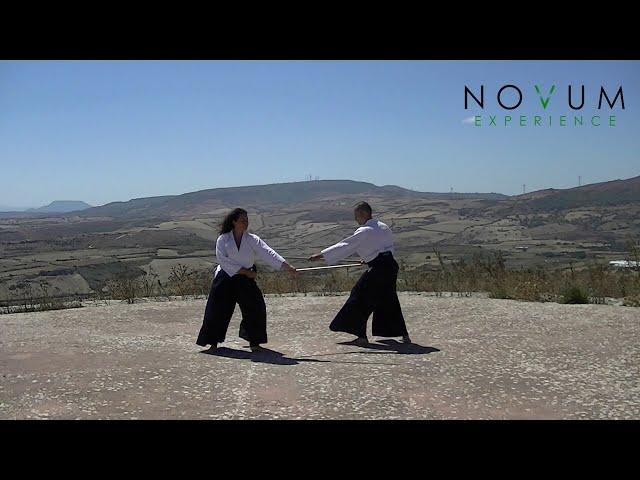 Jo barai no awase - Novum Experience - 合氣道 - 杖払いの合わせ