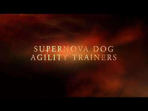 SuperNova Dog Agility