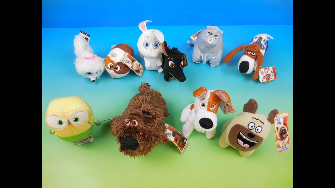 Dog Toy To Make Dog Find Food