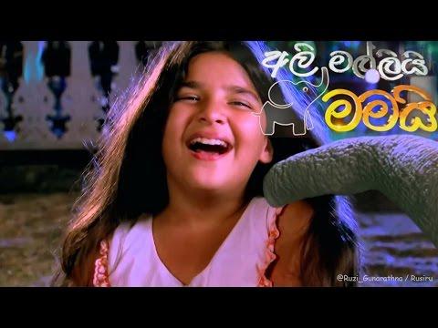 Ali Malli Mamai Theme Song | අලි මල්ලියි මමයි තේමා ගීතය | Tv Derana