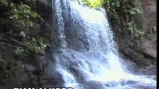 Lagu Dayak Kalbar Parindu