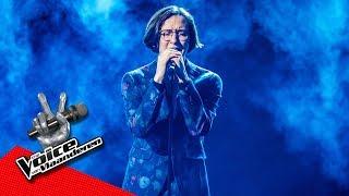 Ibe - 'Someone You Loved' | Finale | The Voice Van Vlaanderen | VTM Video