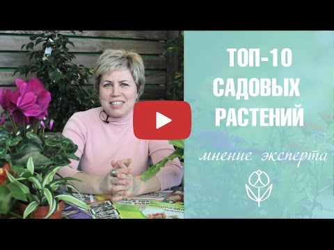 Топ 10 садовых растений ��Теневыносливые