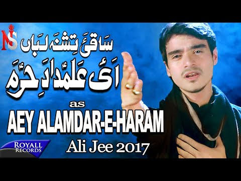 Ali Jee | Aye Alamdar E Haram | 2017 / 1439