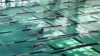 中學學界游泳比賽2012D3(九龍區2)決賽 - 女乙 陳泳希 50蛙