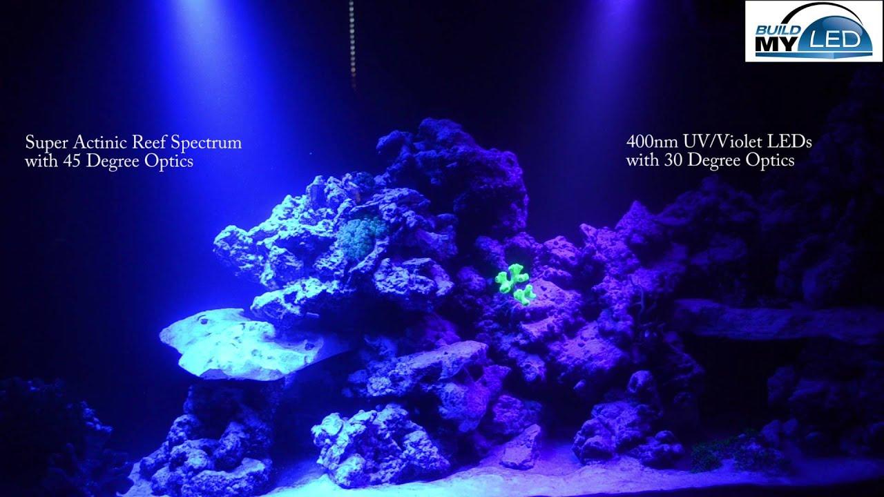 Build My LED Super Actinic Spectrum vs 400nm UV LEDs