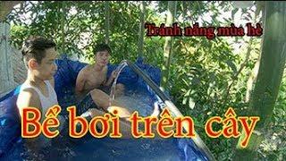 Làm bể bơi trên cây đập tan cơn nóng mùa hè ( Pool on the tree ) Cừ Còng