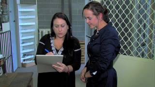 Doorite Screens video - Quality Custom-made Security Doors & Flyscreens