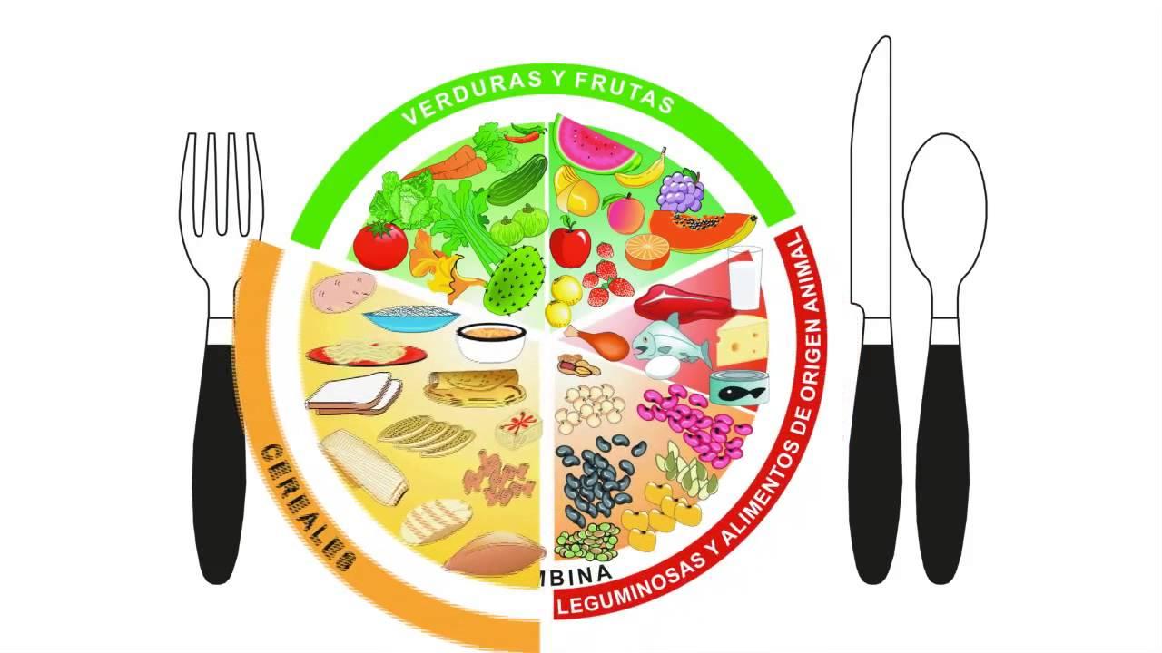 Plato Del Bien Comer Youtube | apexwallpapers.com