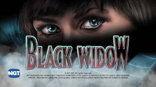 Black Widow® Video Slots by IGT - Game Play Video
