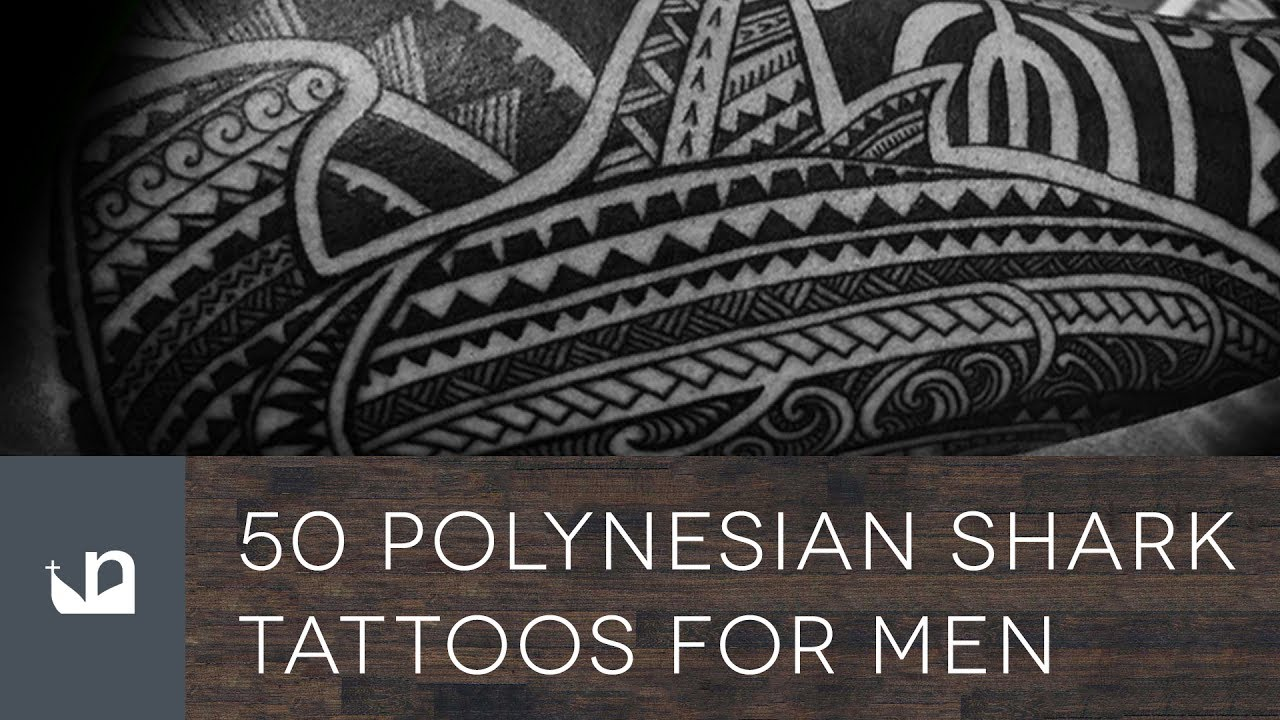 50 Polynesian Shark Tattoos For Men Youtube