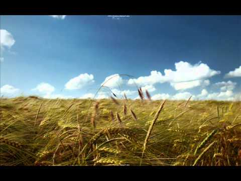 Poco - Magnolia  (JJ Cale cover)