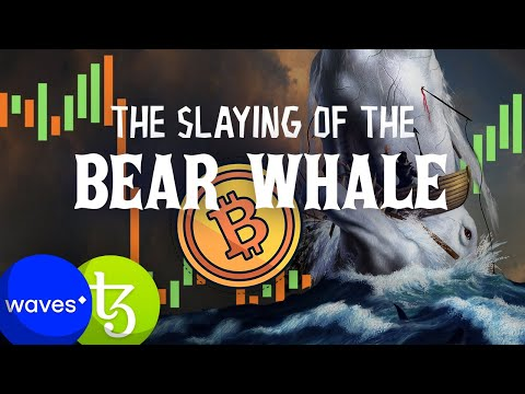 BIG Bitcoin Move Coming💥 Slaying of the BearWhales!! This NEEDS TO HAPPEN!!