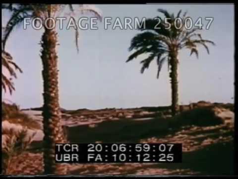 The Ancient World: Egypt 1/2 - 250047-01   Footage Farm