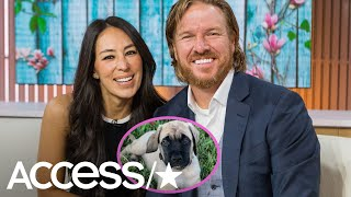 Chip And Joanna Gaines' Family Just Got Even Cuter With New Puppy
