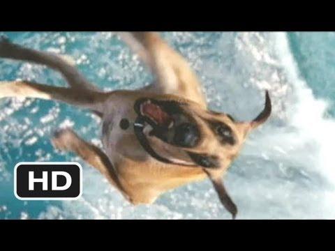 Marmaduke #5 Movie CLIP - Marmaduke Shreds (2010) HD
