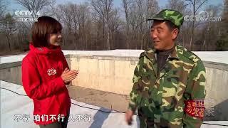[远方的家]大好河山 小兴安岭——建设生态家园  CCTV中文国际