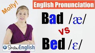 Teacher Molly - Online English Videos