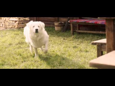 COOP Jednota Slovensko - Kolesomania TV spot * JANDL - Slovakia