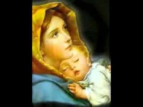 Trái Tim Đức Mẹ Vô Nhiễm