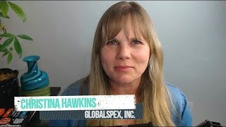 My Web Audit Review by Christina Hawkins
