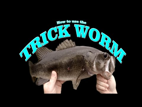 Trick Worms, And How To Use Them!.......Broke Yakin Trick Worm Fishing