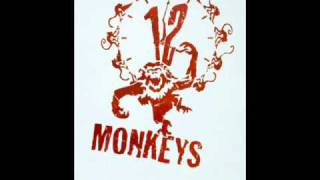 12 Monkeys music theme