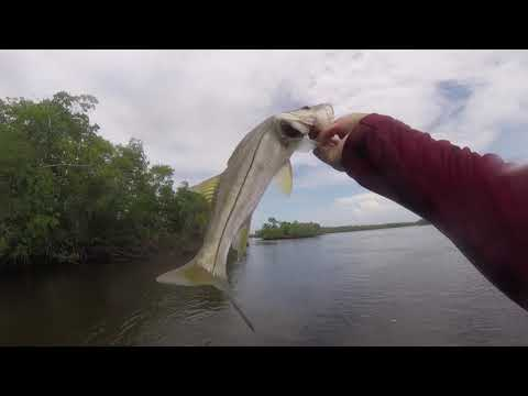 South Florida Fishing Secrets: Redfish Snook And Trout
