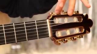Обучение игре на гитаре Урок 1 Устройство гитары