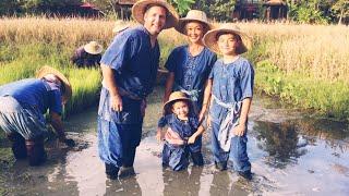 Chiang Mai Thailand Family Holiday at the Dhara Dhevi