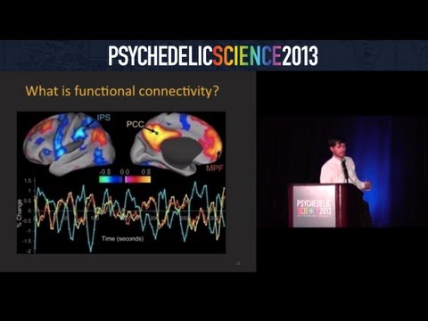 Brain Imaging Studies with Psilocybin and MDMA - Robin Carhart-Harris