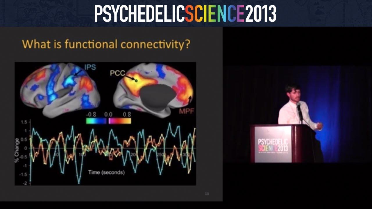 Image result for psilocybin studies