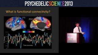 Brain Imaging Studies with Psilocybin and MDMA - Robin Carhart-Harris