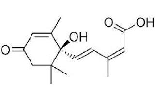 お客様から質問1 アブシジン酸とは 発芽玄米酵素ごはん