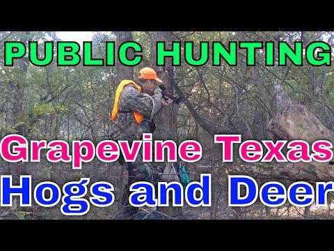 Grapevine TX Public Hunting