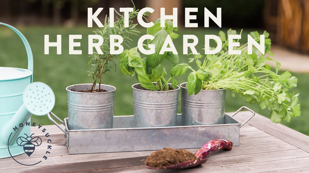 Herb Garden Kitchen Kitchen Herb Garden With Natures Care Honeysuckle Youtube