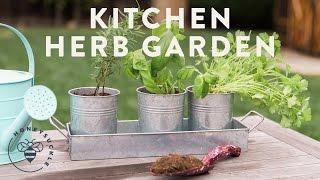 Kitchen Herb Garden with Natures Care - Honeysuckle