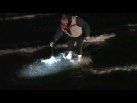 Mokau Beach Fishing With Kites Part 2