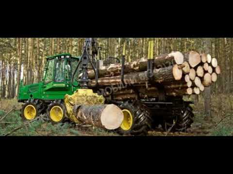 For investors willing to do forest business in Russia! Welco