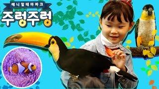 니모와 도리를 만나다! 방귀대장 스컹크 귀요미 수달 투카니 일산 주렁주렁 애니멀 테마파크 2편 장난감 놀이 LimeTube & Toy 라임튜브