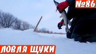 Три щуки за 5 минут. Жерлицы в Глухозимье. Зимняя рыбалка 2019