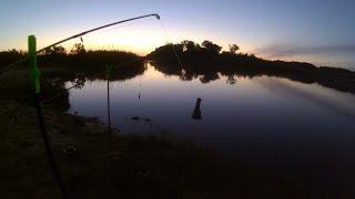 Рыбалка на карася !Ловим рыбу в Садово ! Херсон fishing