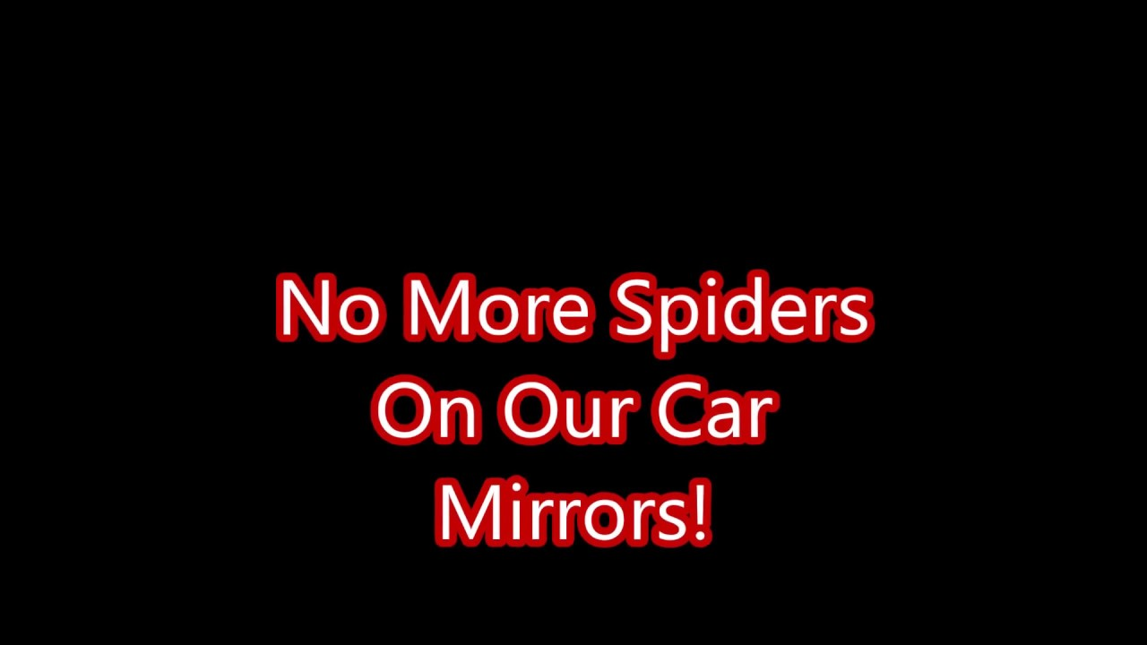 maxresdefault - How To Get Rid Of Spiders In Side Mirror