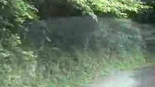 県道442号豊永赤馬長屋線(後半)
