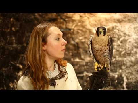 The Falcon Song, shot by Joseph Hunwick in Glastonbury Abbey