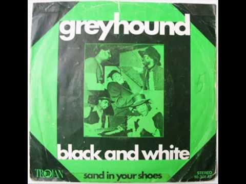 GREYHOUND - BLACK AND WHITE - SAND IN YOUR SHOES