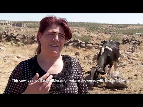 UNRWA microfinance loan brings blessings to female entrepreneur